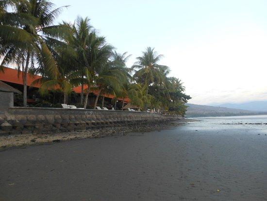 Nugraha Lovina Seaview Resort: Vista dalla spiaggia