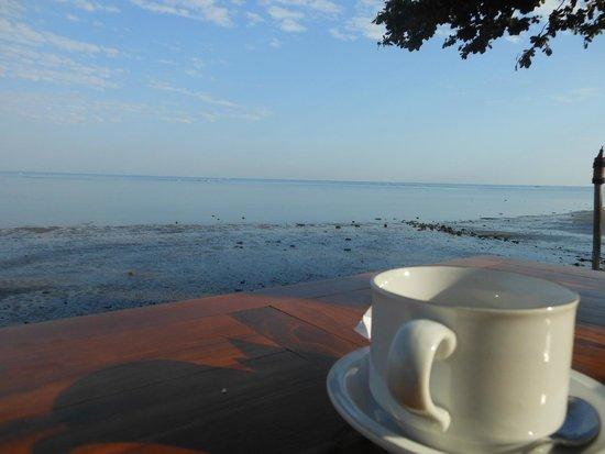 Nugraha Lovina Seaview Resort: Vista dal tavolo