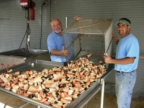 Rusty Anchor Seafood Restaurant Stone Crabs Freshly Cooked From The Fish Market