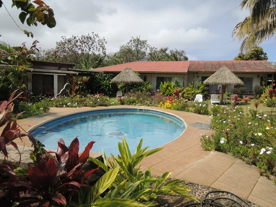 Hotel Gomero : Pool and garden area