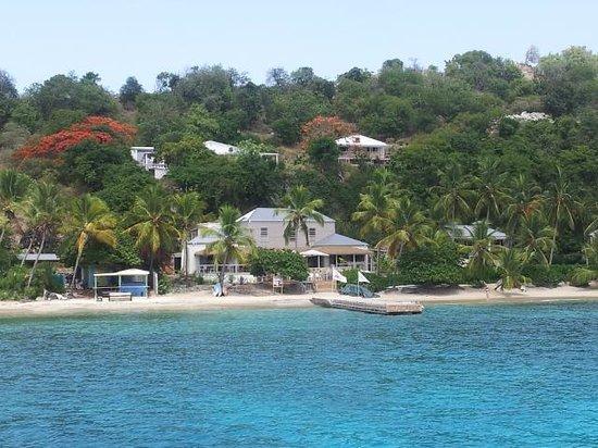Cooper Island Beach Club Restaurant: From our mooring