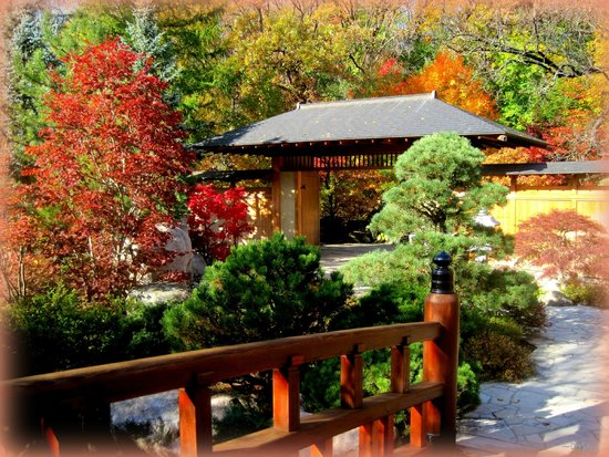 beautiful water fall color picture of anderson japanese gardens rockford tripadvisor. Black Bedroom Furniture Sets. Home Design Ideas