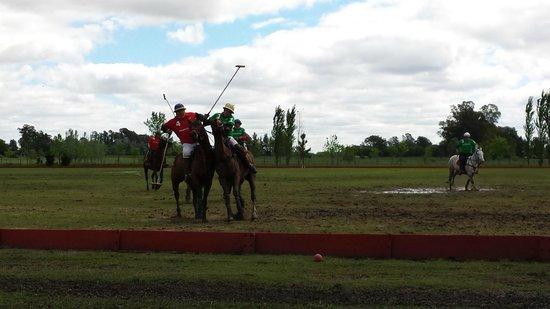 Argentina Polo Day : Impact