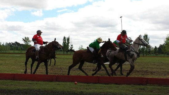 Argentina Polo Day : Polo players