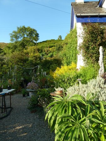 Lip na Cloiche Bed and Breakfast : Lucy's garden