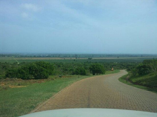 Vipingo Ridge : Drive down from the clubhouse