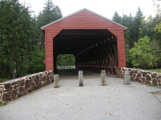 After Dark Investigations: Bridge where we saw the ghost smoke/move a cigarette.