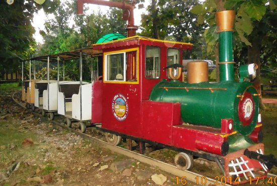 Gorakhpur, Indien: Toy train with its two comparments