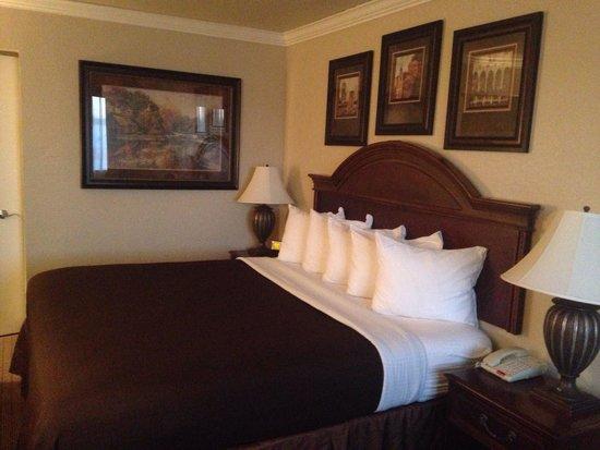BEST WESTERN Inn of McAlester: King room