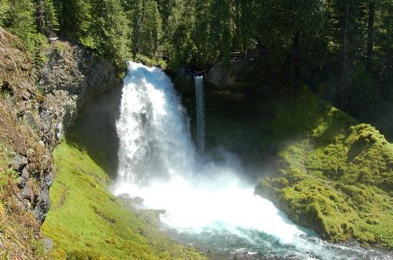Eugene, OR: Koosah Falls from McKenzie river trail