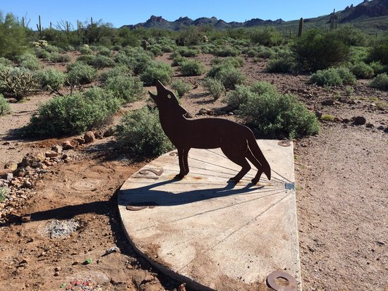 Lost Dutchman State Park: Chayote sundial