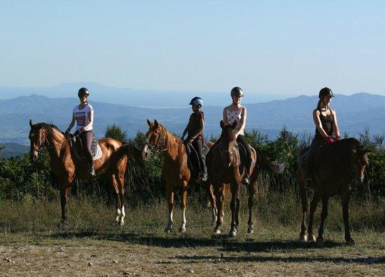 Prategiano - Horse Riding Holiday Tuscany: Trail riding in Tuscany, Italy