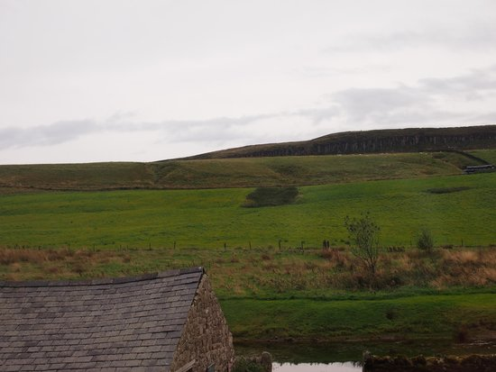 Saughy Rigg Farm: View from our window