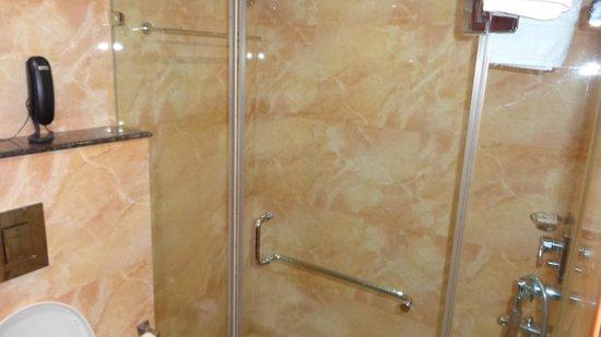 Hotel Regent Grand: Bathroom1