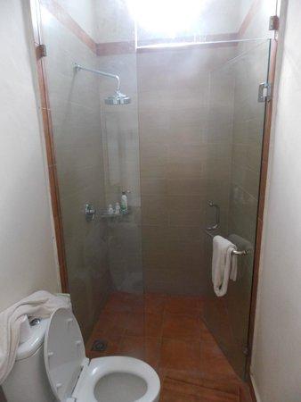 Inata Bisma Resort & Spa Ubud : baño. pequño