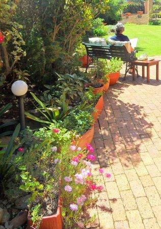 Bayside Lodge : garden