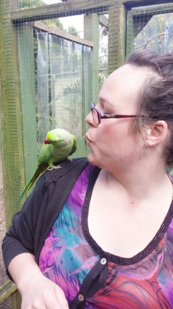 The Parrot Place: Such cheeky little thing =)