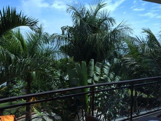 Protea Hotel by Marriott Entebbe: view from the room (Lake Vic behind the trees)