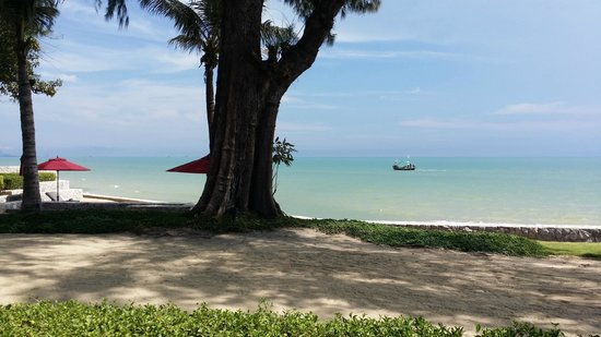 The Barai Suites : View from Mc Farland