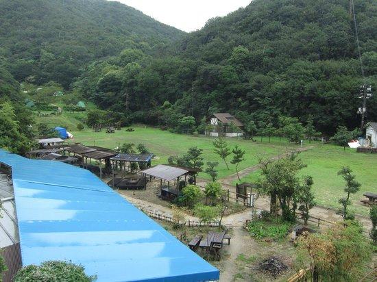 Sensui Island Camping Site