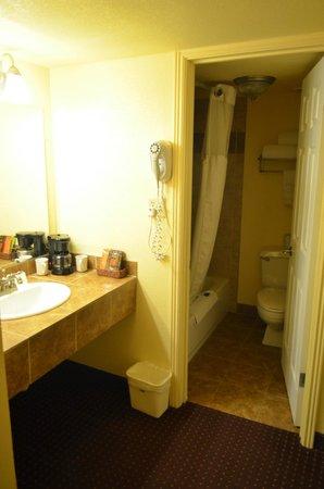 BEST WESTERN Phoenix Goodyear Inn: il bagno