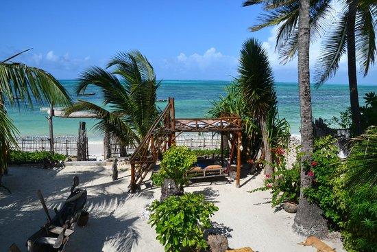 Mango Beach House: Aussicht vom Restaurant