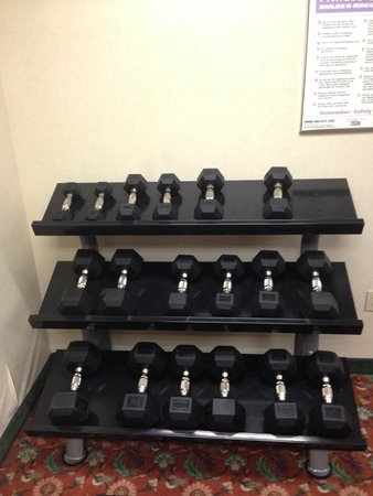 Comfort Inn & Suites: Nice dumbbell set and bench.