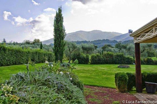Tenuta Di Santa Lucia: La tenuta