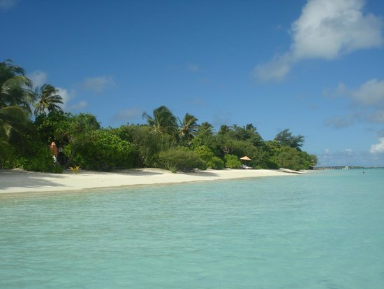 Lux Maldives Formerly Diva Island Resort And Spa Booking