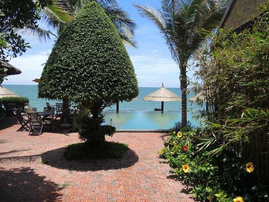 Lotus Village Resort: бассейн на первой линии и за ним океан