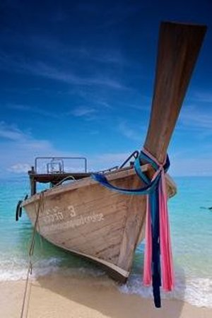 Andaman Camp and Day Cruise : Beautiful Longtail
