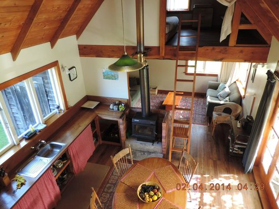 The Innlet Backpackers and Cottages : Kitchen and living area