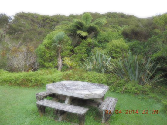 The Innlet Backpackers and Cottages: The grounds of the cottage
