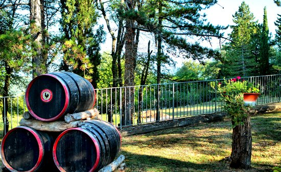 Villa Sant'Uberto Country Inn : The grounds