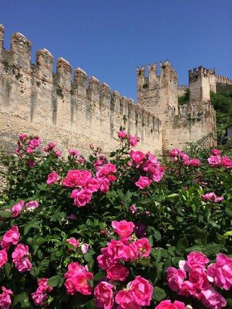 Soave, İtalya: le mura e il castello
