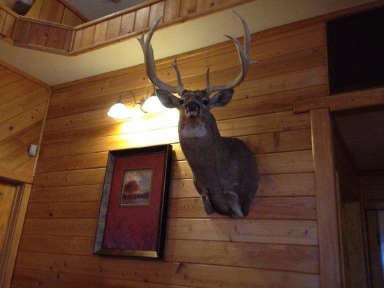 Big Wood BBQ and Grill: Big wood BBQ