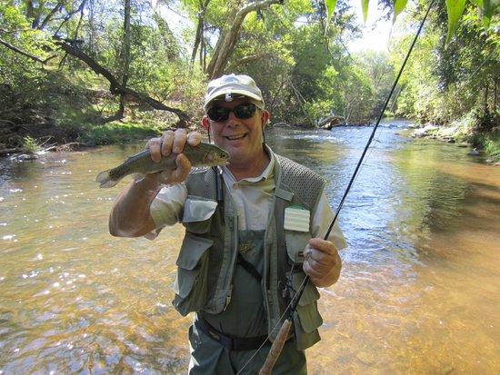 Oak creek rainbow picture of sedona fly fishing for Arizona fly fishing