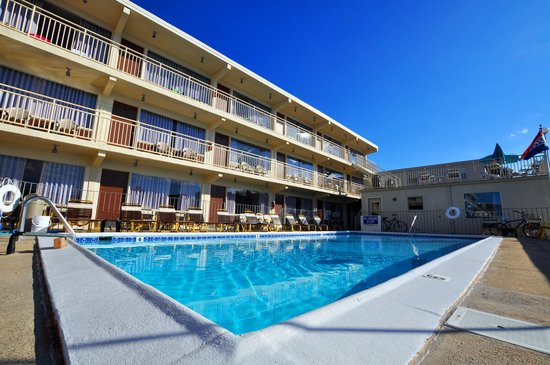Lark Motel: Our sparkling pool