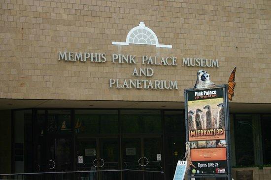 Pink Palace Museum: Pink Palace