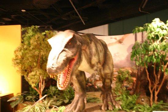 Pink Palace Museum : Dinosaur