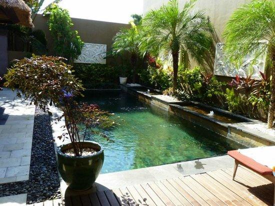 Ajanta Villas: бассейн