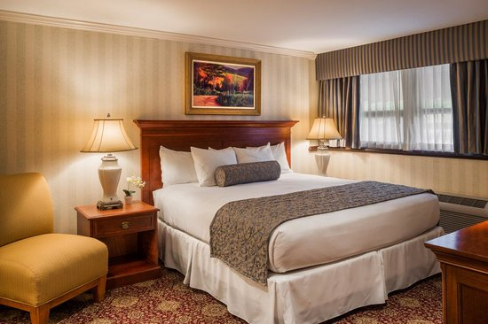 Radnor Hotel: Premier Suite