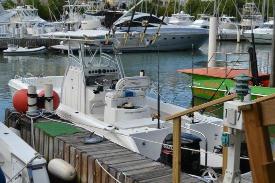 Maguro Fishing Charters