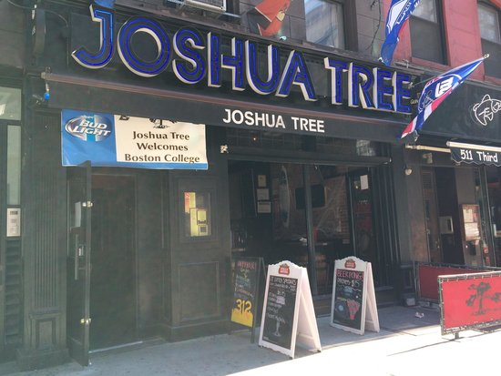 joshua tree nyc hook up