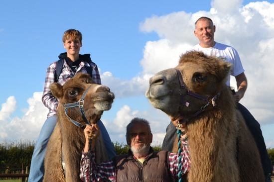Oasis Camel Park: With Elvis and Cuthburt!