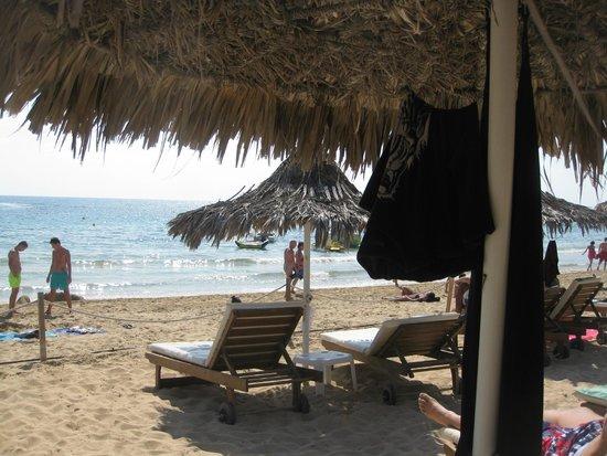 Grecian Bay Hotel: Пляж