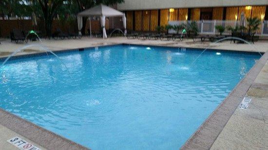 Hilton Arlington: Hilton Pool