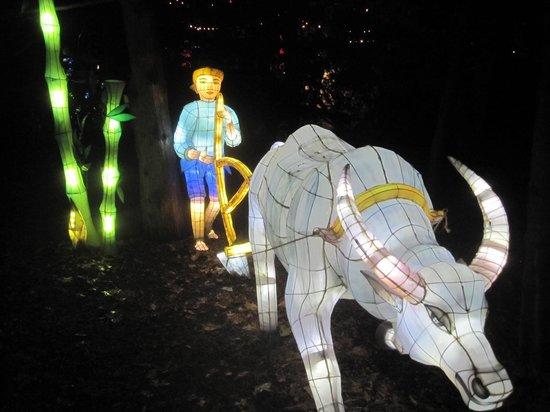 Personnage Et Bufle Illumines Dans Le Jardin Chinois Photo De