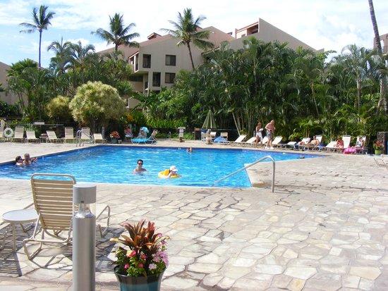 Kamaole Sands : Pool