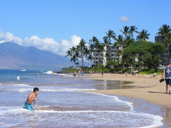 Kamaole Sands : Beach